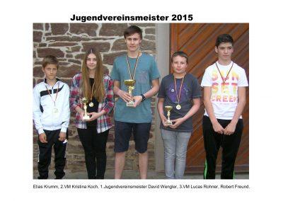 1505_VM 2015 Jugend_Aushang